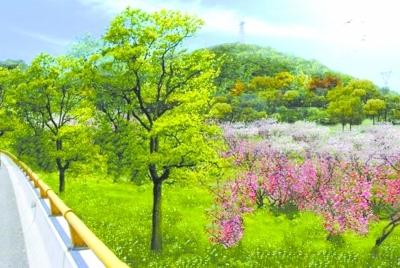 1亩;在通道周边经济景观带,种植杨梅,樱桃,桃树,李树等树种,带动通道