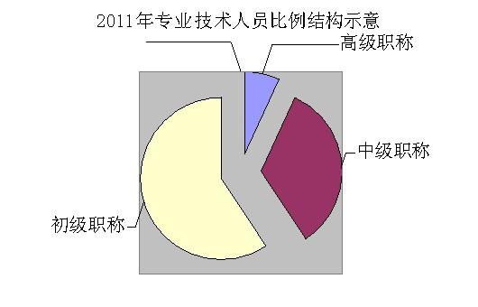 贵州省专业技术人才队伍建设成效显著