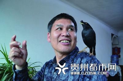 """贵州/蒋先生与八哥在""""交谈""""。"""