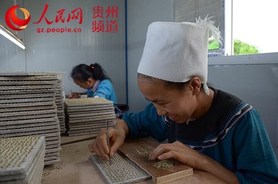 榕江:农民工进城办眼镜厂 带动生态移民妇女就