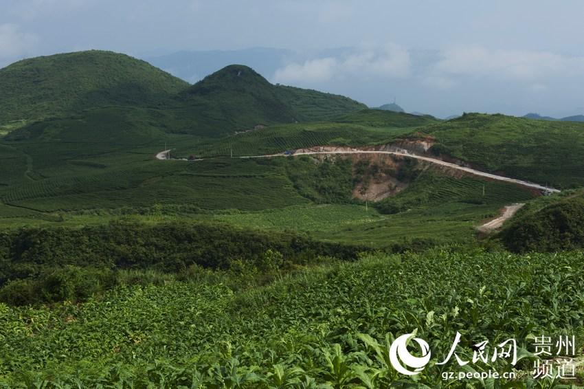 贵州省公路局美丽乡村小康路