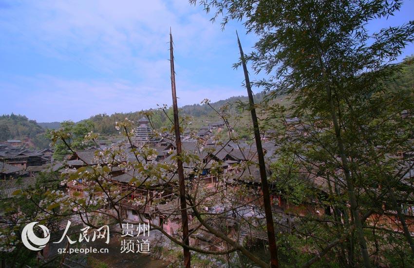 榕江大利:森林里花桥流水的心灵家园【高清组