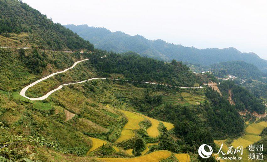 蜿蜒曲折的通村公路
