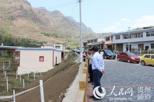 蟠龙镇召开农业产业结构调整现场观摩会