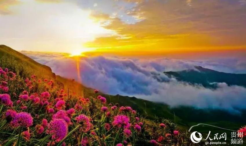2016贵州十佳美丽乡村评选展示-毕节市赫章县兴发乡中