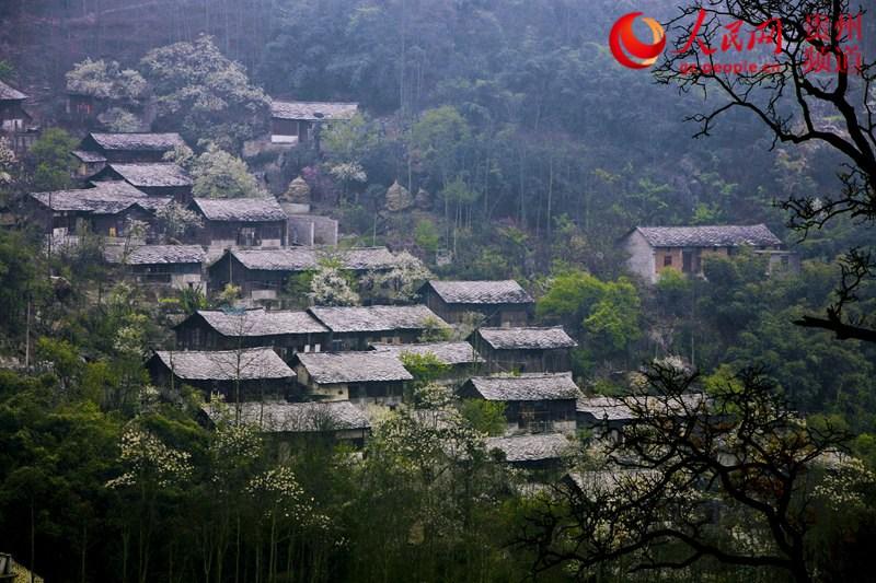 2016贵州十佳美丽乡村评选展示-安顺市黄果树石头寨村