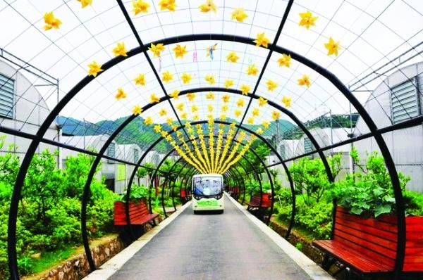 凯里云谷田园生态农业旅游景区-各具特色 邀你体验