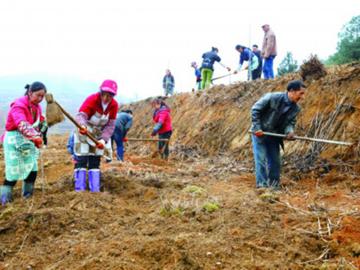 乌当将建设五个田园综合体日前,记者从乌当区了解到,该区今年将全力推进田园综合体建设,建设羊昌・花画小镇田……