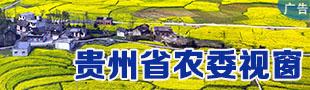 贵州省农委视窗