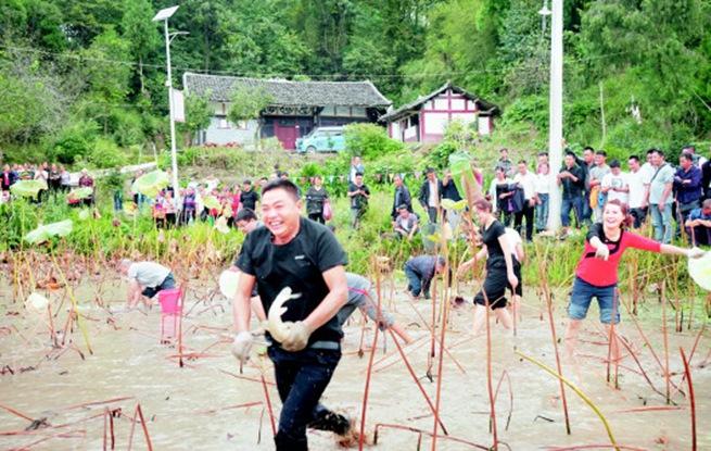 凤冈县王寨镇首届农民丰收节活动精彩纷呈