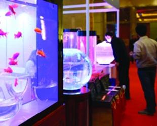 """筑城迎来""""水族年会""""10月16日,由中国自然科学博物馆协会水族馆专业委员会主办的……"""