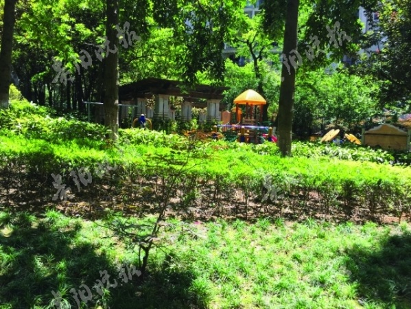 """南垭山体公园 开园迎客啦截至12月17日,历经三年建设的云岩区市级示范性公园——""""南垭山体公园""""及12……"""