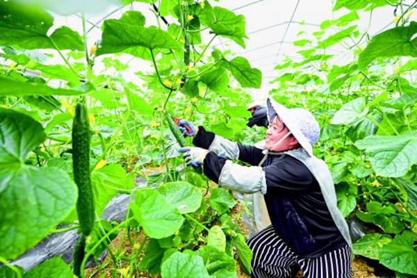 http://www.k2summit.cn/jiankangzhinan/912545.html