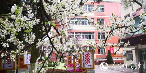 """贵州安顺:校园战""""疫""""三大""""硬核""""保平安"""