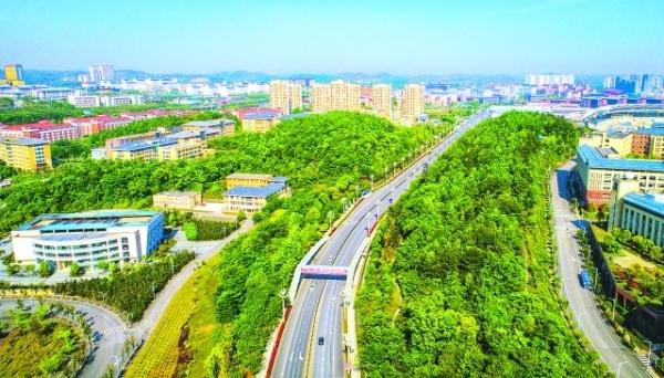 生态环境良好的大学城。