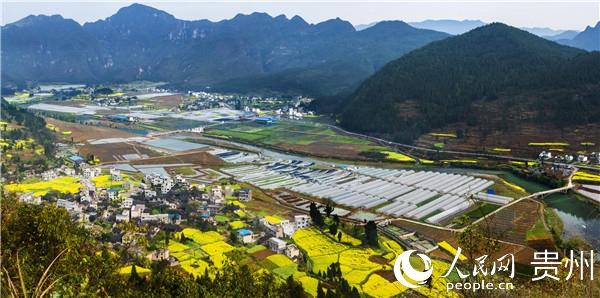 铜仁:农村产业发展带动90万贫困群众增收